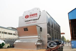 packaged chain grate boiler
